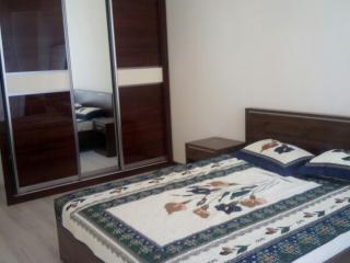 Amazing 2 bedroom apartment for rent - Dushanbe vacation rentals