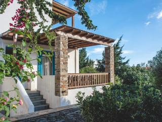 Andros-Maisonettes SUPERIOR VILLA - Gavrio vacation rentals