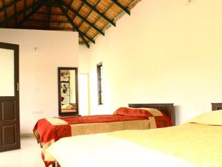 5 bedroom Resort with Housekeeping Included in Chikamagalur - Chikamagalur vacation rentals