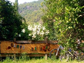 Eco glamping in Bell tent, Cirali - Cirali vacation rentals