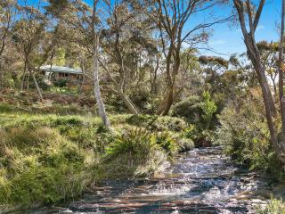 Perfect 2 bedroom House in Wentworth Falls - Wentworth Falls vacation rentals