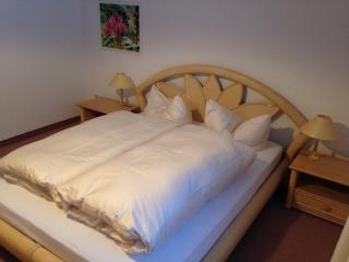 1 bedroom Condo with Internet Access in Balderschwang - Balderschwang vacation rentals