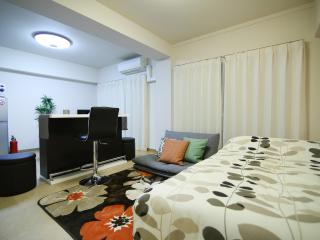 Gorgeous Modern Apt near Skytree J2 - Sumida vacation rentals
