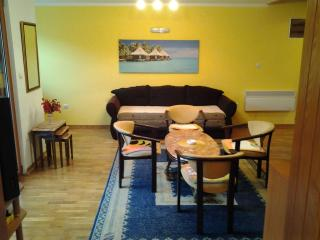 Apartment in heart of Budva - Budva vacation rentals