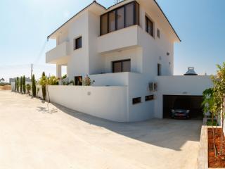 Villa Andriana (Private Pool, Sauna, Jacuzzi, Gym) - Ayia Napa vacation rentals