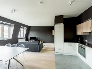 Smartflats Saint-Jean 201 - 1Bedroom - City Center - Liege vacation rentals