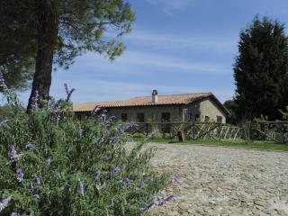 Borgo Case Bardi - Scansano vacation rentals