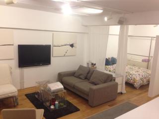 Riverside Designer family Apt nr Namba, Dotonbori - Osaka vacation rentals