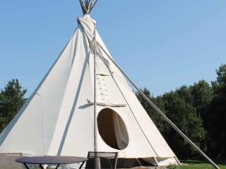 Au chat qui pêche, le tipi - Thenay vacation rentals