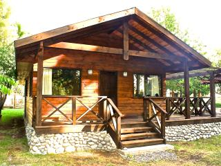 Cozy Chalet with Private Fishing and Balcony - Villarrica vacation rentals