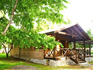 Cozy 3 bedroom Chalet in Villarrica - Villarrica vacation rentals