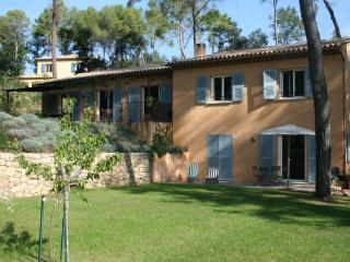 Provencal house with pool near Valbonne - Roquefort les Pins vacation rentals