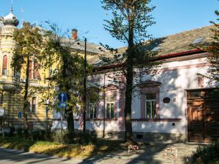Charming 9 bedroom Bed and Breakfast in Sombor - Sombor vacation rentals