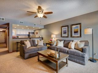 Beautifully remodeled mountainside condo-free WIFI - Frisco vacation rentals