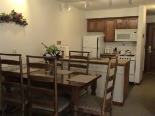 Rimfire Lodge - Full Studio with Full Kitchen - Snowshoe vacation rentals