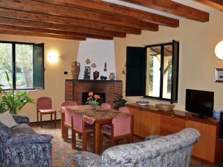Villa Tulipano - Villa with large outdoor near Etna - Zafferana Etnea vacation rentals
