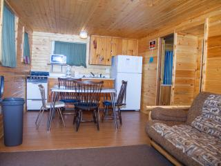 Season long cabin on West Battle Lake - Battle Lake vacation rentals