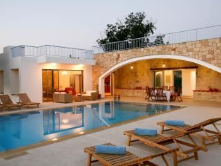 3BR-3BA luxury villa with amazing indoor jacuzzi. - Miliou vacation rentals