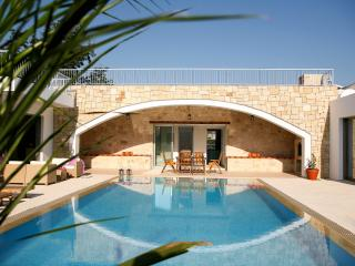 Magnificent villa,  indoor jacuzzi, pool, privacy - Miliou vacation rentals