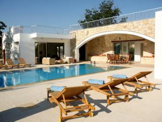 Magnificent villa,  indoor jacuzzi, pool, privacy - Miliou vacation rentals