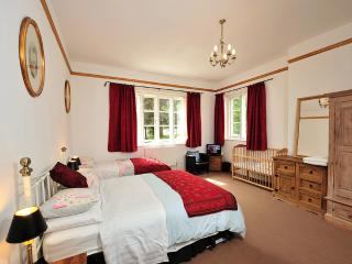 Spacious apartment in Oxfordshire - Chilton vacation rentals