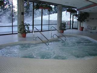 Nice 3 bedroom Snowbird Apartment with Garage - Snowbird vacation rentals