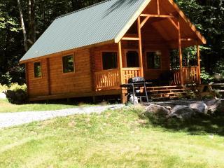 log cabin in the woods near ski resorts - Blakeslee vacation rentals