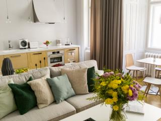 STYLE & LUXURY IN CHARMING OLD TOWN - Prague vacation rentals
