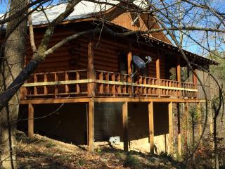 Cabin on Wolfpen Gap ATV Trail- Mena, Arkansas - Mena vacation rentals