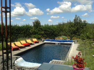 Sublime maison périgourdine avec piscine - Le Bugue vacation rentals