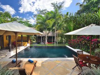 Jendela di Bali - UNIQUE 2 Bedrooms Ubud Bali villa. STUNNING pool - Ubud vacation rentals