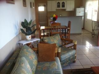 Lizzie's Tropical Vibes Apartment Belize City - Belize City vacation rentals