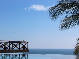 Casa Junto Al Mar- Huge Infinity Pool - Puerto Escondido vacation rentals
