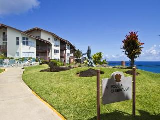 Wonderful 2 bedroom Princeville Resort with Internet Access - Princeville vacation rentals