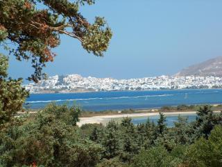 First floor apartment with panoramic sea views - Agios Prokopios vacation rentals