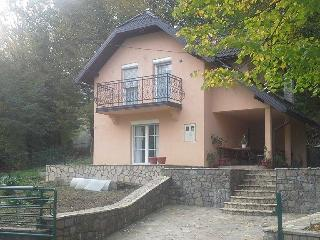 Beautiful House with Internet Access and A/C - Brcko vacation rentals