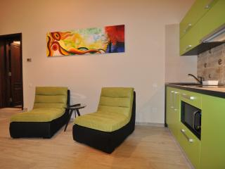 Select City Center Apartments - Evergreen Studio - Brasov vacation rentals
