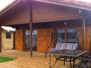 Lakeview Lodge, Lakeside Log Cabin inc New Hot Tub - Tattershall vacation rentals
