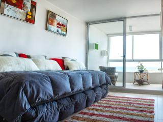Rent Apartment in Valparaiso with a great view - Renaca vacation rentals