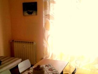 Accogliente appartamento  centro storico - Novara vacation rentals