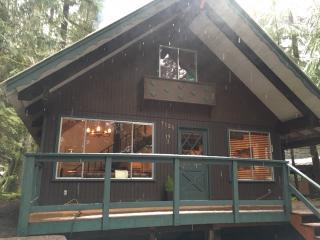Mount Baker Rustic Modern Chalet - Glacier vacation rentals