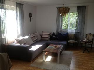 Nice And Spacious Flat Near Linz And Wels - Wels vacation rentals