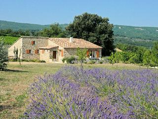 St Martin de Castillon Provence Luberon Charming landhouse 5p, eated private pool - Caseneuve vacation rentals