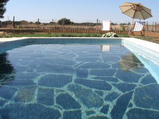 Casa de Charme- piscina privada, bbq, wi-fi - Estremoz vacation rentals