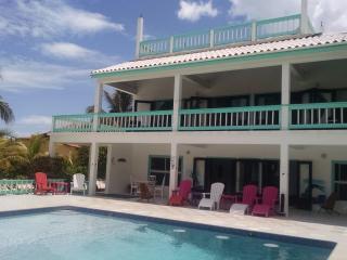 Blue Dolphin Villa - San Pedro vacation rentals