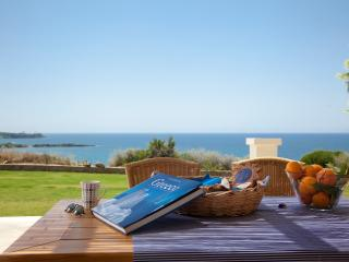 Ploes Villas-Sea Villa- Ionian beach, Anc. Olympia - Skafidia vacation rentals