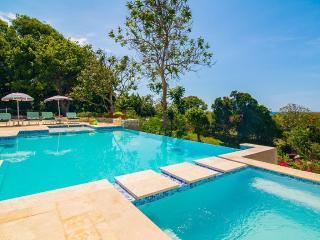 Nice Villa with Internet Access and Television - Saint James Parish vacation rentals