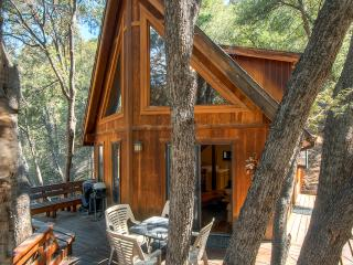 """The Tree House"" 3BR Pine Mountain Club Cabin Near Scenic Nature Trails - A Romantic, Relaxing, Fun Slice of Heaven! - Pine Mountain Club vacation rentals"