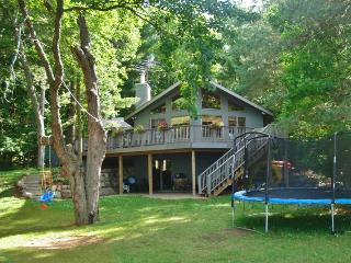 2BR Luck Cabin w/New Kitchen, Zip Line & Firepit - Beachfront on Bone Lake w/ Dock for Great Musky Fishing and Year-Round Outdoor Activities! - Milltown vacation rentals