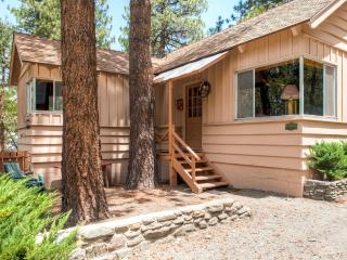 New Listing! 'Rustic Acorn' Cozy 2BR + Loft Wrightwood Cabin w/Wood Burning Fireplace & Peaceful Views - Easy Access to Hiking, Cross Country Skiing, Zip Lining & More! - Wrightwood vacation rentals